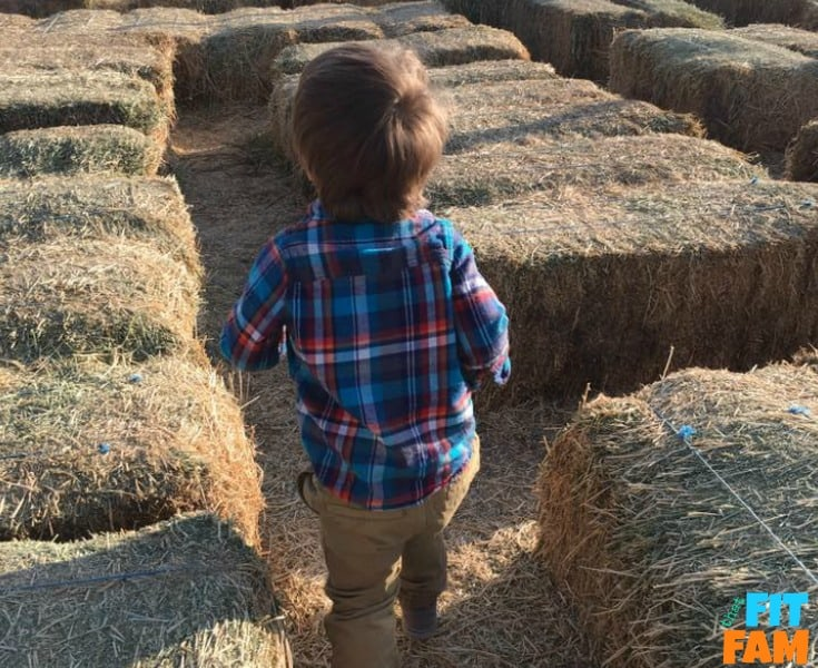 small child size hay maze.