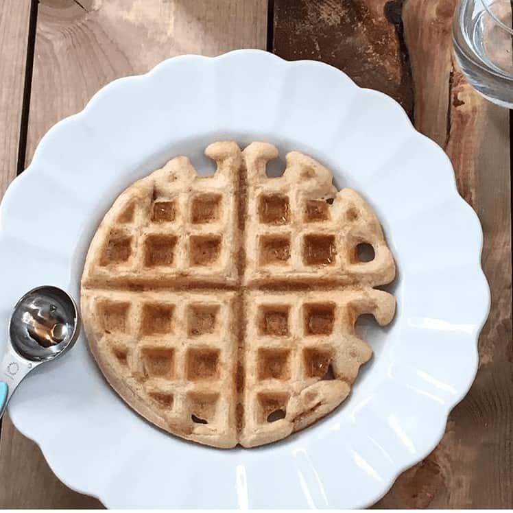 large kodiak cake waffle