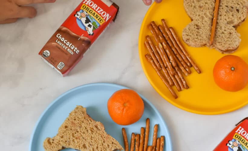 school lunchbox ideas for young kids