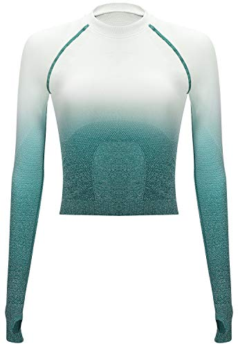 RUNNING GIRL Ombre Seamless Crop Top Long Sleeve Layer Crew Neck